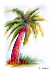 dessin palmier
