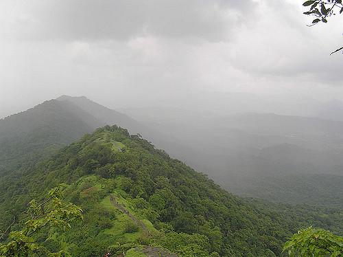 collines-sous-la-pluie-cc-elroy-serrao